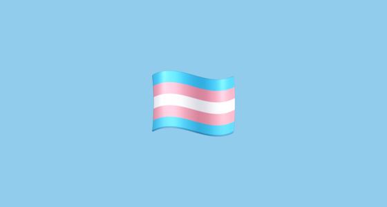 ️‍⚧️ Transgender Flag Emoji on Facebook 3.1