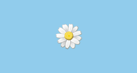 Flower Aesthetic Png