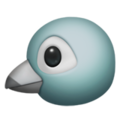 Bird on Apple iOS 12.1