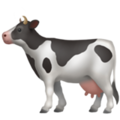 Cow on Apple iOS 12.1