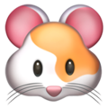 Hamster Face on Apple iOS 12.1