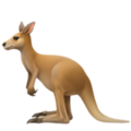 Kangaroo on Apple iOS 12.1