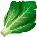 Leafy Green on Apple iOS 12.1