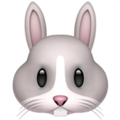 Rabbit Face on Apple iOS 12.1