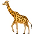 Giraffe on Apple iOS 12.2