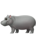 Hippopotamus on Apple iOS 12.2