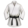 Martial Arts Uniform on Apple iOS 12.2
