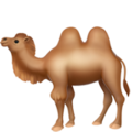 Two-Hump Camel on Apple iOS 13.1