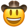 Cowboy Hat Face on Apple iOS 13.1