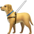 Guide Dog on Apple iOS 13.2