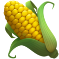 Ear of Corn on Apple iOS 13.3