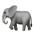 Elephant on Apple iOS 13.3