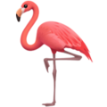 Flamingo on Apple iOS 13.3