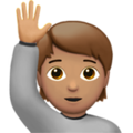 Person Raising Hand: Medium Skin Tone on Apple iOS 13.3