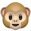 Monkey Face on Apple iOS 13.3