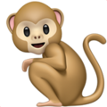 Monkey on Apple iOS 13.3