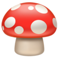 Mushroom on Apple iOS 13.3