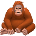 Orangutan on Apple iOS 13.3