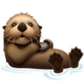 Otter on Apple iOS 13.3