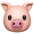 Pig Face on Apple iOS 13.3