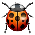 Lady Beetle on Apple iOS 14.2