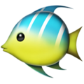Tropical Fish on Apple iOS 14.2