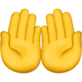 Palms Up Together on Apple iOS 14.6