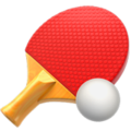 Ping Pong on Apple iOS 14.6