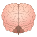 Brain on emojidex 1.0.34