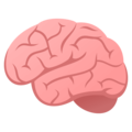 Brain on JoyPixels 4.5