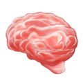 Brain on Emojipedia 11.1