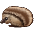 Hedgehog on Emojipedia 11.1