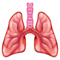 Lungs on Emojipedia 13.0