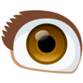 Eye on Facebook 2.2.1