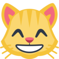 Grinning Cat Face With Smiling Eyes on Facebook 2.2.1