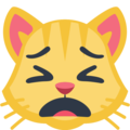 Weary Cat Face on Facebook 2.2.1