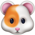 Hamster Face on Facebook 3.0