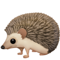 Hedgehog on Facebook 3.0