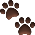Paw Prints on Facebook 3.0