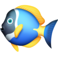 Tropical Fish on Facebook 3.0