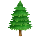 Evergreen Tree on Facebook 3.1