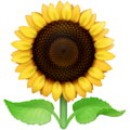 Sunflower on Facebook 3.1