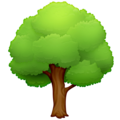 Deciduous Tree on Facebook 4.0
