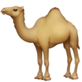 Camel on Facebook 4.0