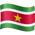 Flag: Suriname on Facebook 4.0