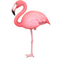 Flamingo on Facebook 4.0