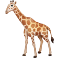 Giraffe on Facebook 4.0