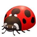 Lady Beetle on Facebook 4.0