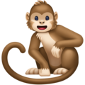 Monkey on Facebook 4.0