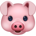 Pig Face on Facebook 4.0